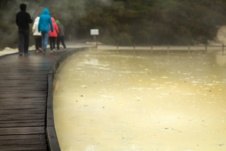Boardwalk crossing in Waiotapu