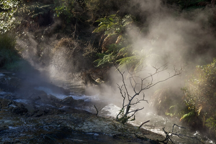 Boiling river flow, Waimangu Volcanic Valley