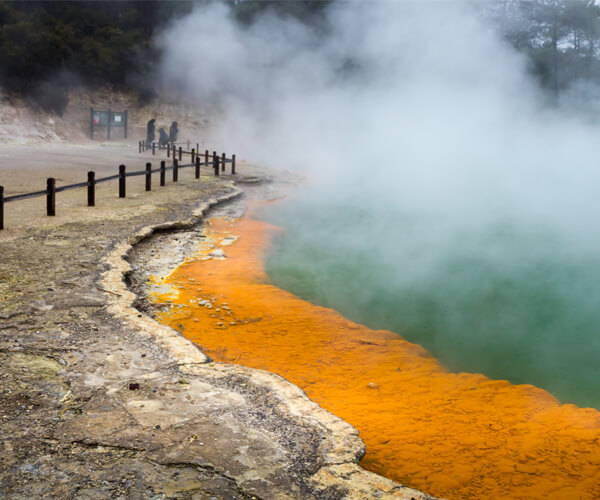 Wai-O-Tapu is an active geothermal area near Rotorua in New Zealand's Taupo Volcanic Zone that has colourful pools and active Lady Knox Geyser.