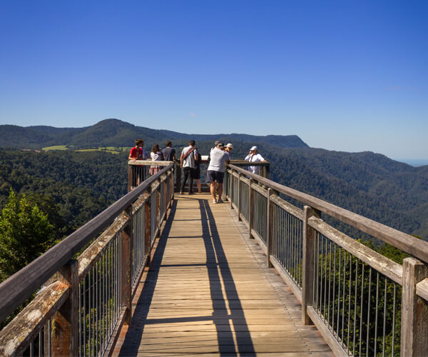 Dorrigo Skywalk is a short walk with incredible lookout about the trees in Dorrigo Rainforest Centre