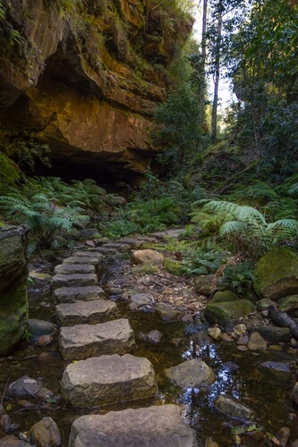 Grand Canyon track, The Blue Mountains
