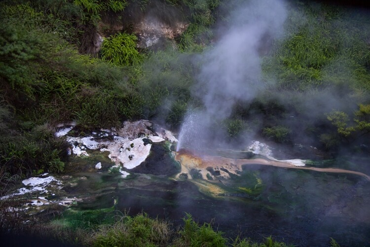 Hot thermal water geyser, Waimangu Volcanic Valley