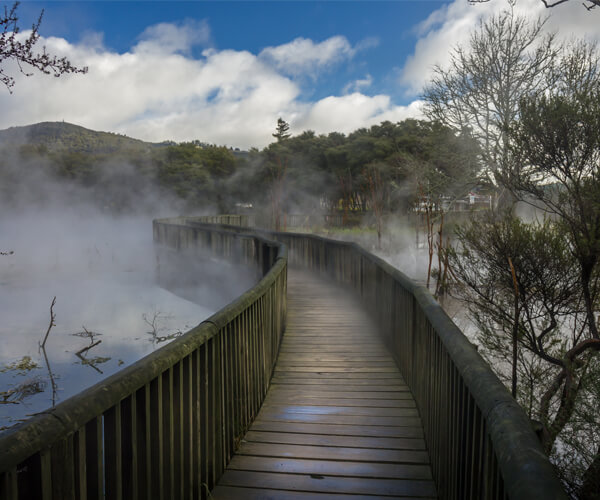 Kuirau Park is a free public park in the centre of Rotorua where you could discover boiling streams, fenced thermal springs, mud pools, and steaming lake