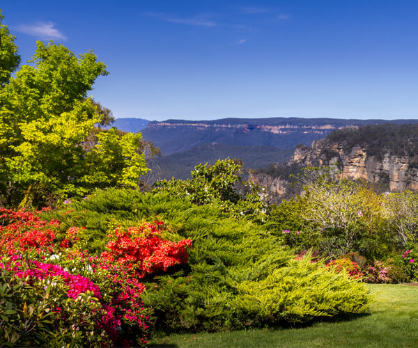 Around eleven blooming gardens in the Blue Mountains are opened for visiting for a week in spring (October).