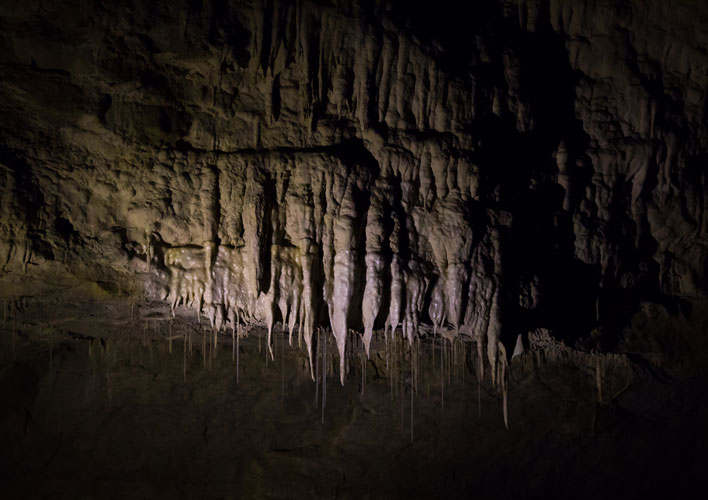 Stalactites in Waitomo caves